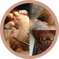 servicos-odontologia