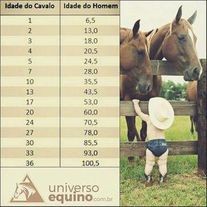idade-cavalo-x-homem